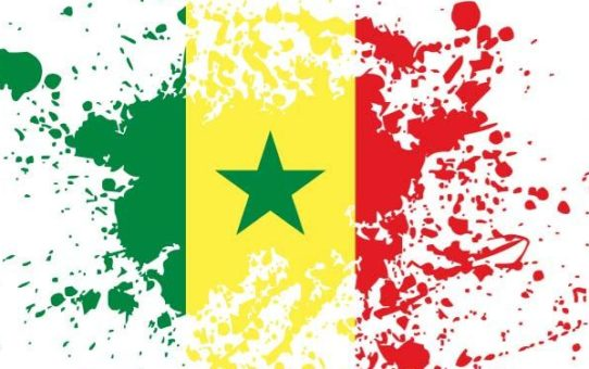 Viaggio Missionario 2018 in Senegal