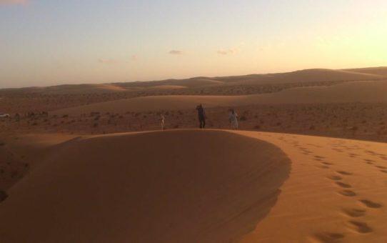 Sahara Occidentale - Fiori nel deserto: ministero delle vocazioni