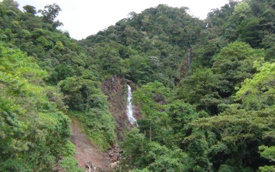 Querida Amazonia e il sogno di una Chiesa missionaria /3